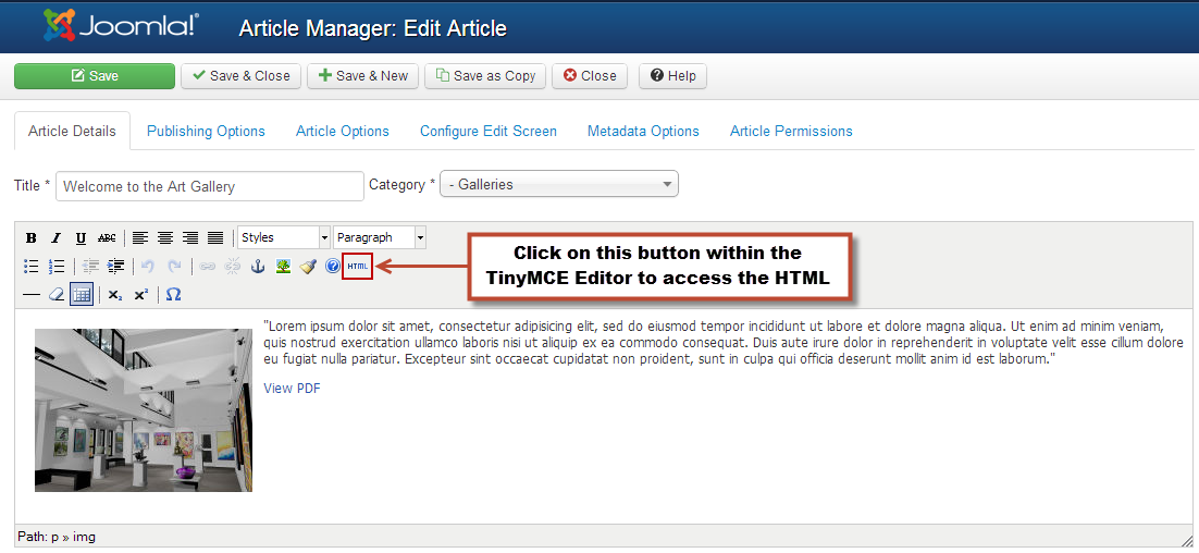 Embedding HTML in Articles (Joomla 3)