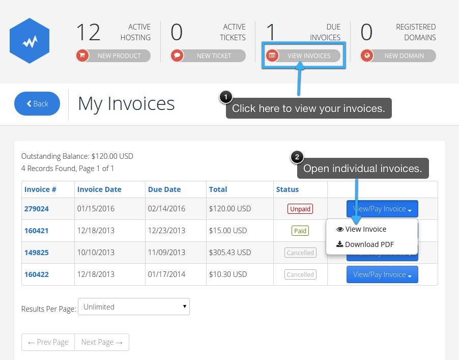 Paying Your Invoice Using Paypal
